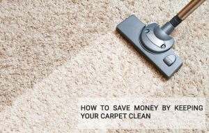 How to Save Money by Keeping Your Carpet Clean