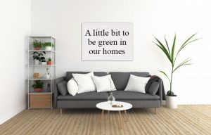 We can all do a little bit to be green in our homes