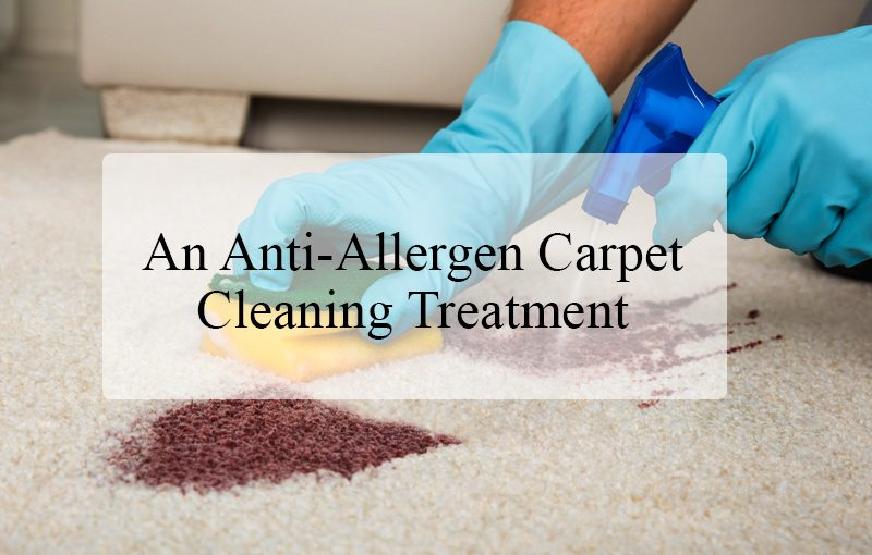 What is an Anti-Allergen Carpet Cleaning Treatment?