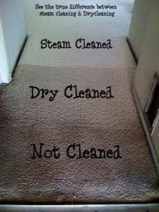 Carpet Steam Clean vs Carpet Dry Clean
